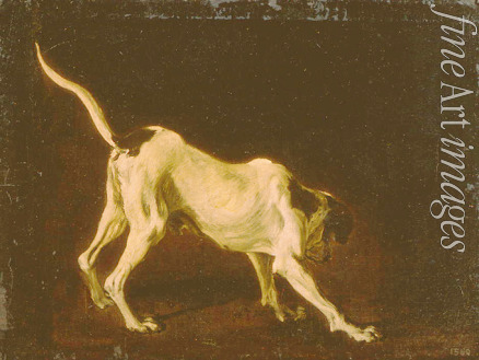 Snyders Frans - A dog